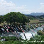 湯之尾の滝の鯉のぼりとガラッパ公園~伊佐市菱刈