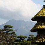 鹿児島仙巌園の菊まつりに行ってきました 2016年は11月23日まで