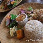 鹿児島市 cafe indigo(カフェインディゴ)でカラフルなオーガニックランチ